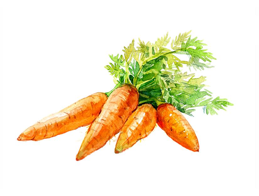 vedere și morcovi