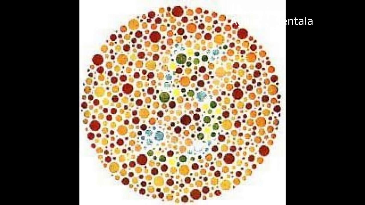 Colorlite - Teste Daltonisme