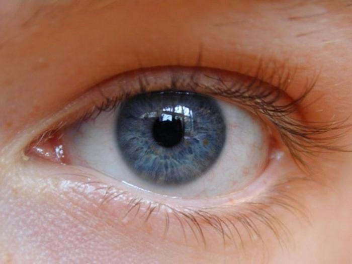 Cum să restabiliți și să îmbunătățiți vederea în scurt timp acasă
