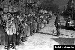 8 martie în Crimeea. Tururi de mai multe zile. Plimbare de seară în Yalta