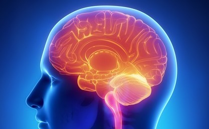 Neuroștiință cognitivă