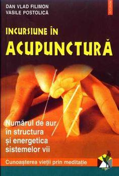 viziunea acupuncturii