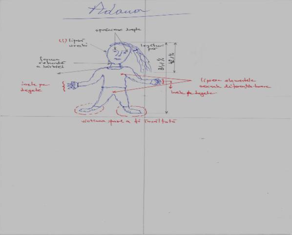 organe de vedere în desene)