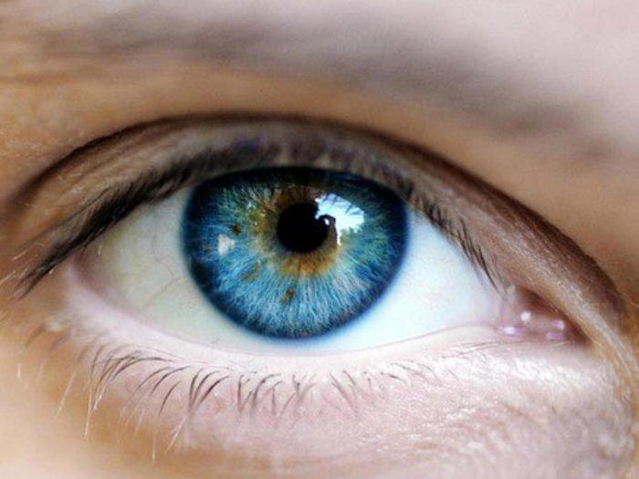 celule stem în oftalmologie