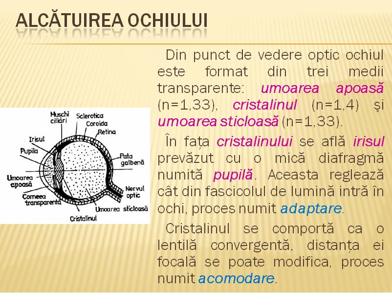 hipermetropie și activitate fizică caracteristici cu deficiențe de vedere