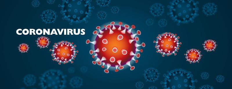 Eritem infectios (boala a cincea) | localuri-bucuresti.ro