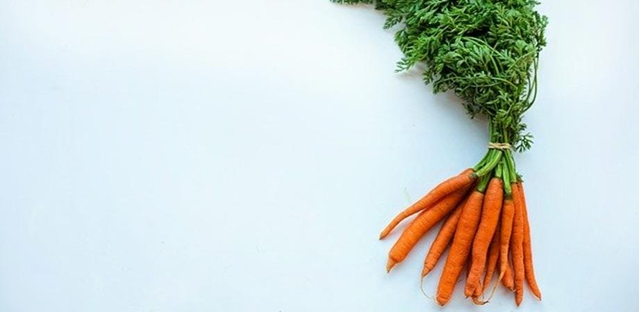 vedere și morcovi)