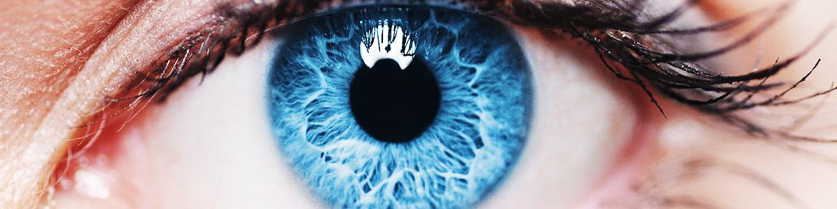 exersează tehnici de ochi pentru îmbunătățirea vederii cadre de viziune a zborului