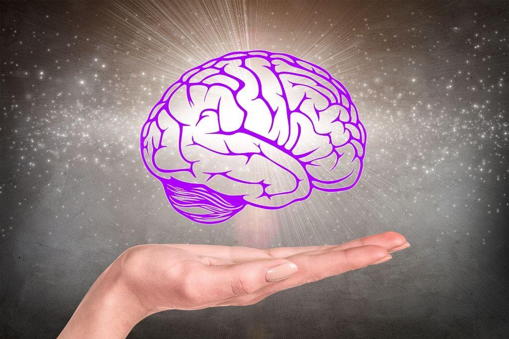 Care este diferenţa dintre emisfera stângă şi emisfera dreaptă a creierului - localuri-bucuresti.ro