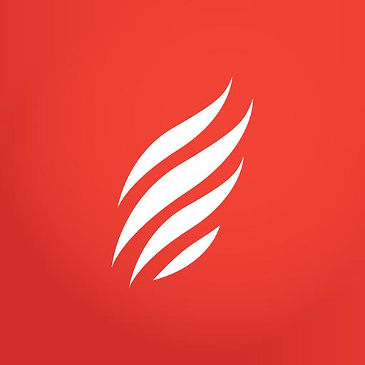 cerc vizual cerc roșu)