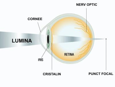 test de vedere pupile dilatate
