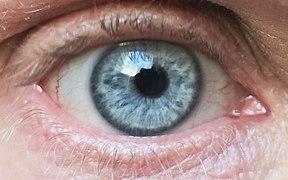 Am 20 de ochi)
