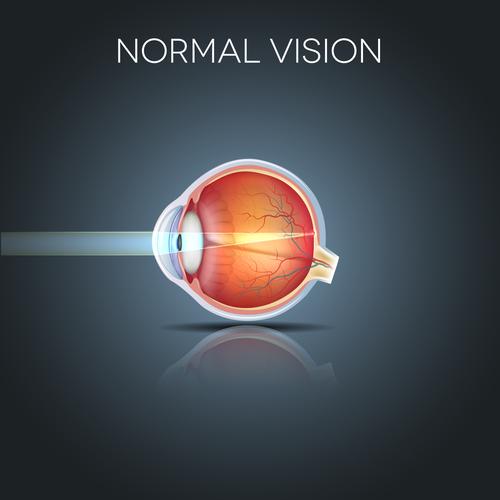 viziune normală în număr