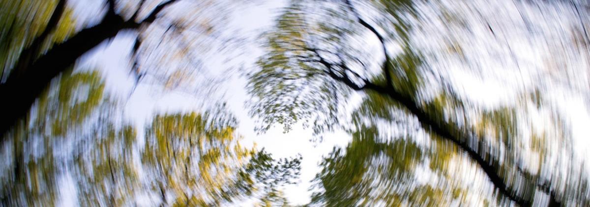 amețeli și tulburări de vedere miopia adăugată