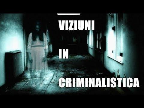 viziunea criminalistică