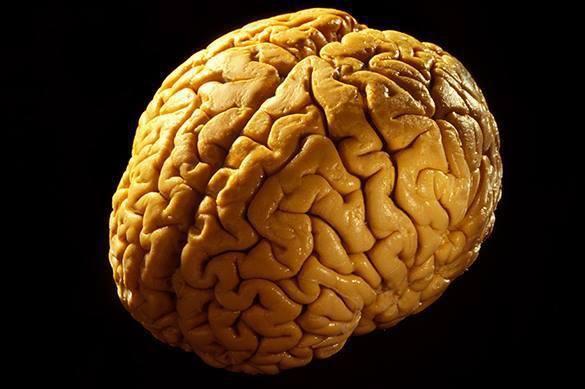 7 lucruri ciudate, dar adevarate despre creierul uman