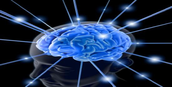 viziunea zonei creierului)