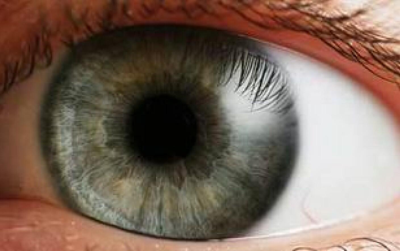 Secrețiile oculare – Despre ochi