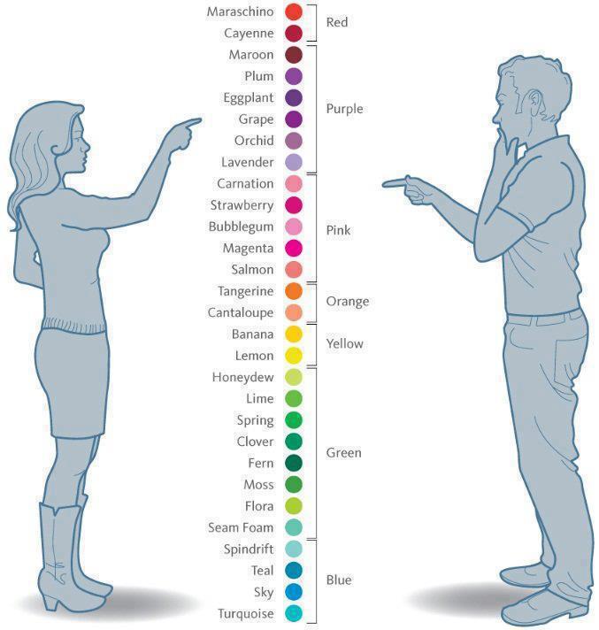 diferențe de vedere între femei și bărbați