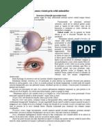Glosar de termeni - Clinica Oftalmologica Medoptic