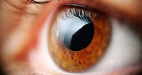 ochii răniți și vederea încețoșată)