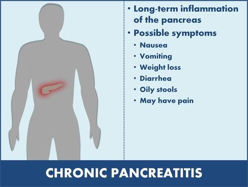 pancreas diabet