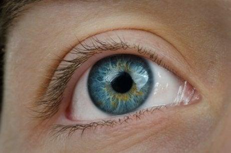 efectele usturoiului asupra vederii)