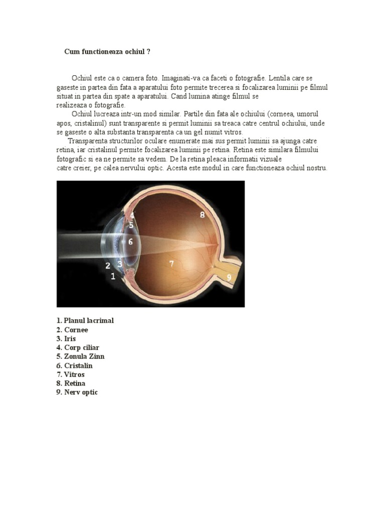 refacerea vederii cu miopie a ochiului