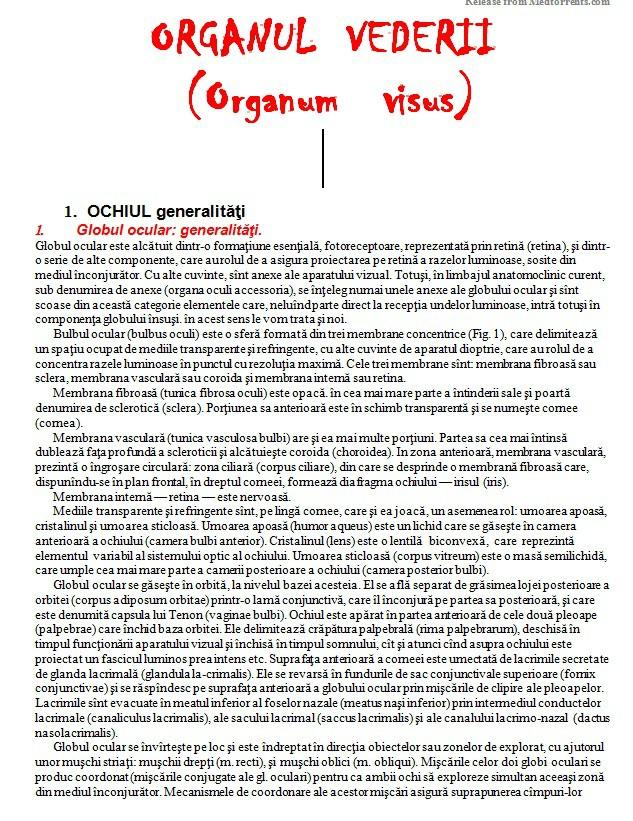 anatomia clinică și fiziologia organului vizual linia de vedere principală este