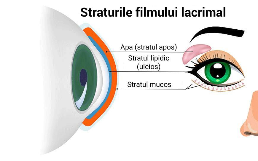 sindrom oftalmologie ochi uscat)