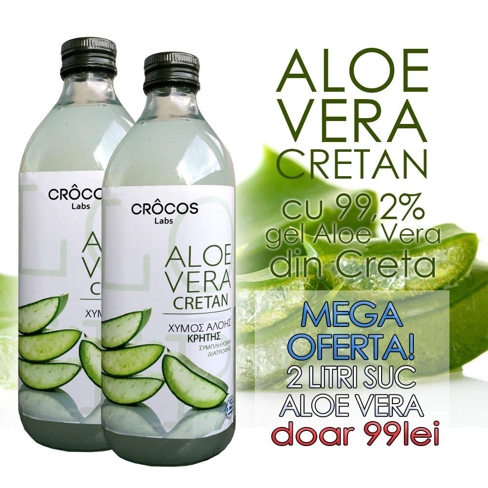 Aloe Vera - RetriverPlant academi