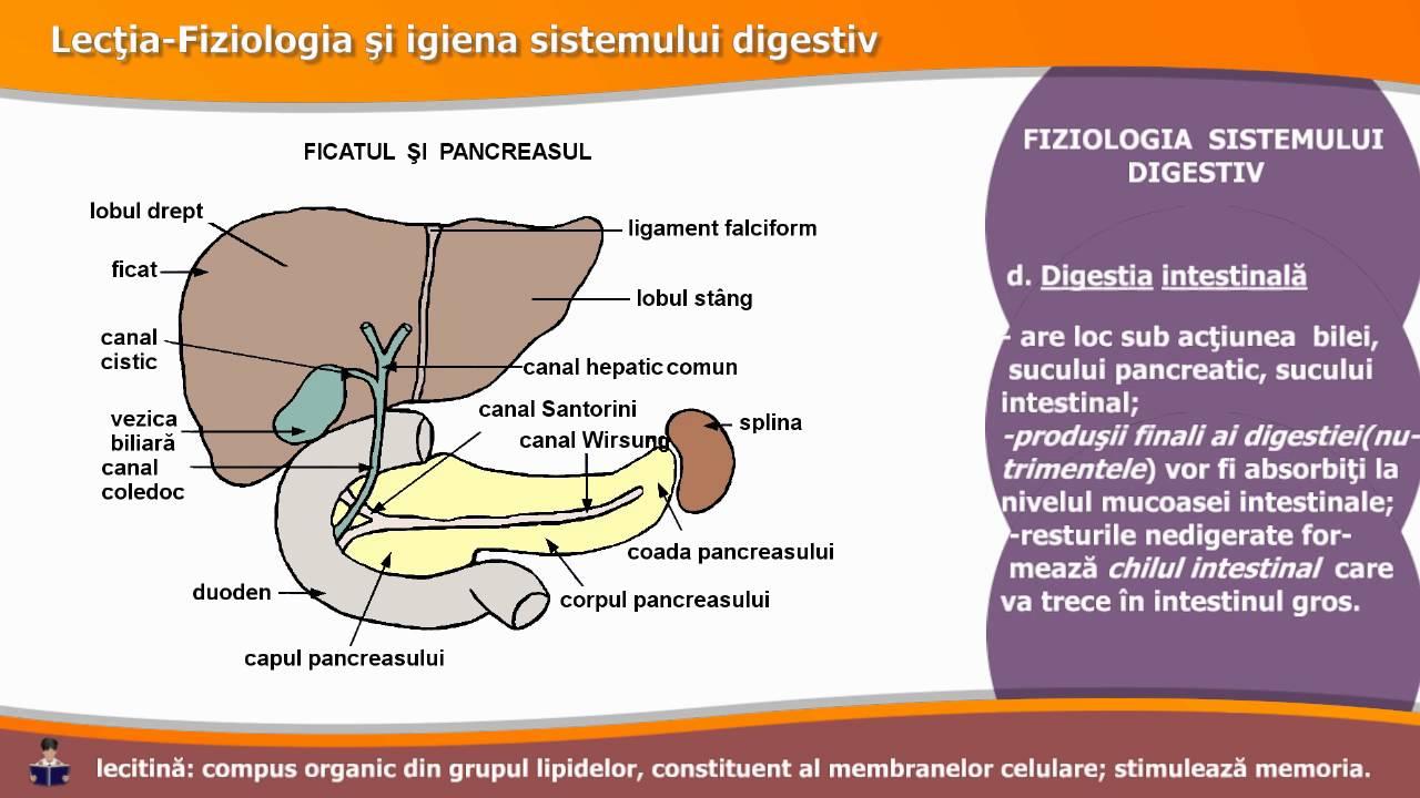 boli ale pancreasului și ale vederii