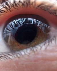 perturbarea somnului pierderea vederii