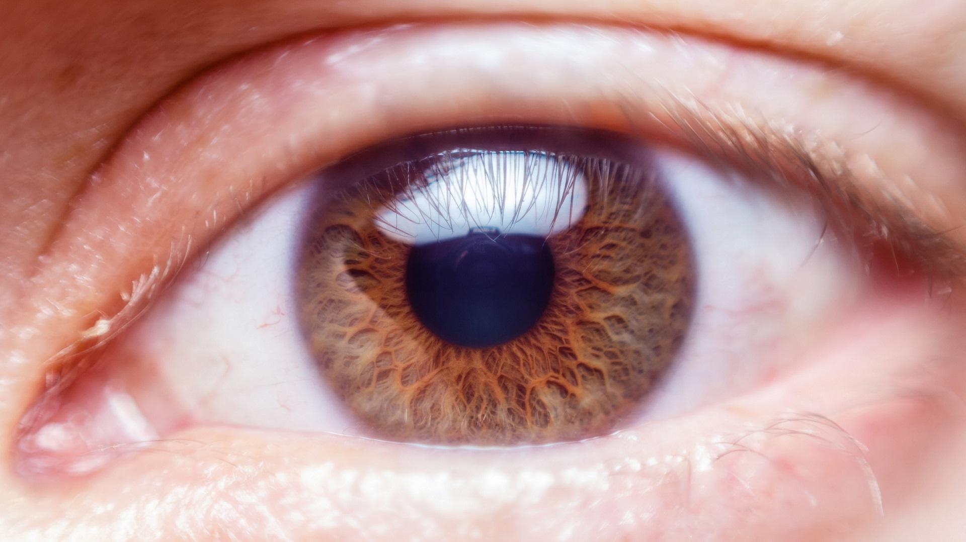 De ce este benefic plânsul viţei-de-vie pentru ochii noştri | Paradis Verde