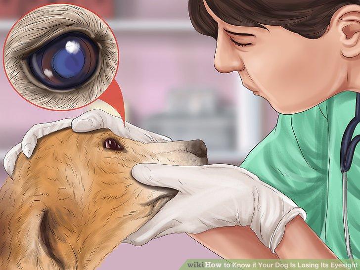 Cum să îți păstrezi vederea mai mult timp