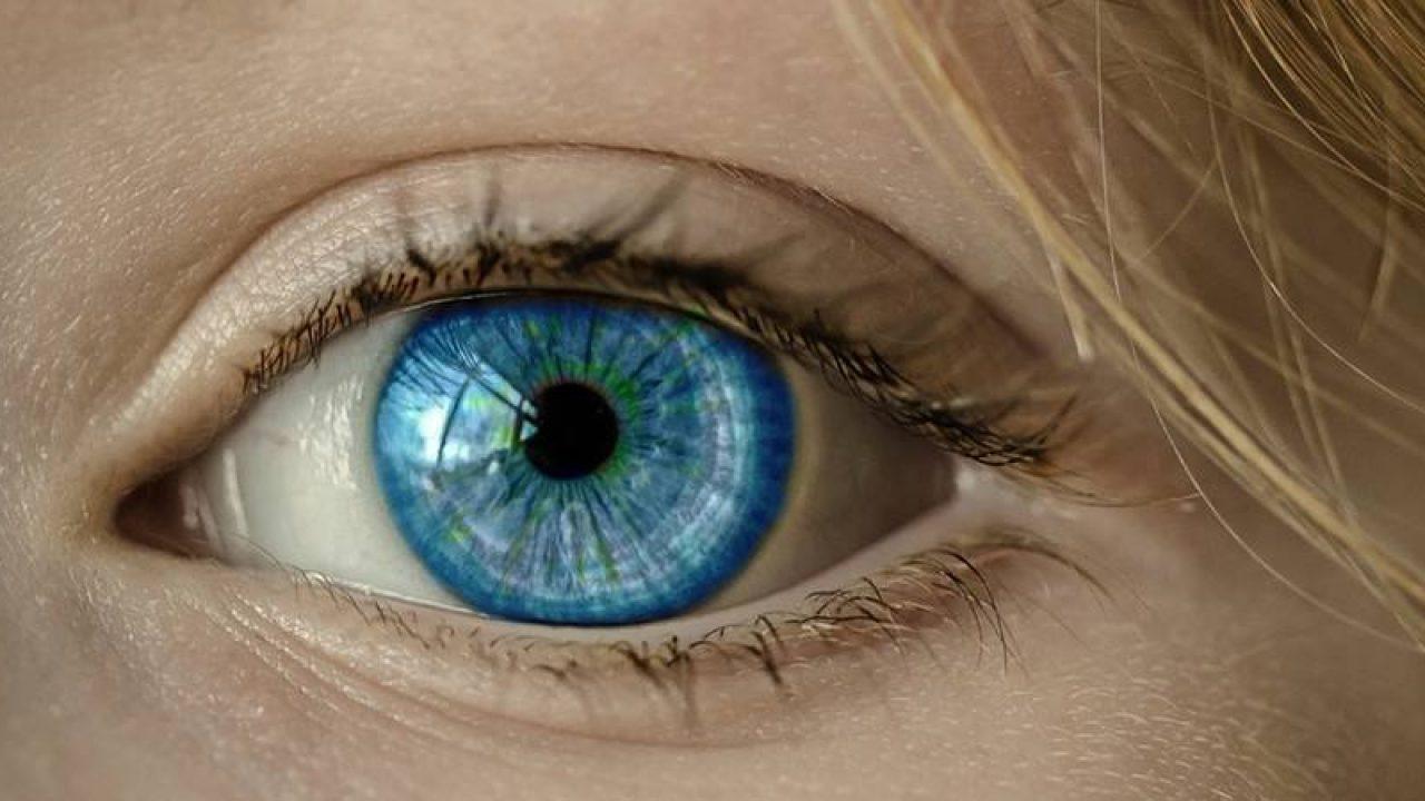 vederea ochiului cerebral)