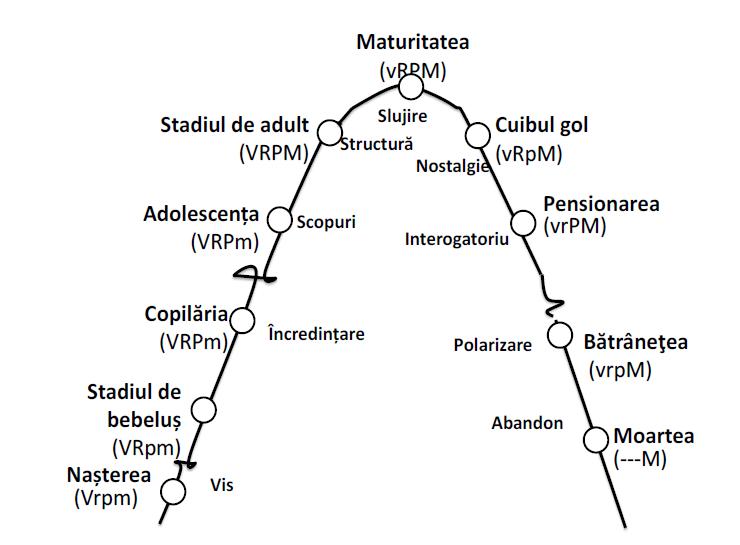 diagrame de dezvoltare a viziunii