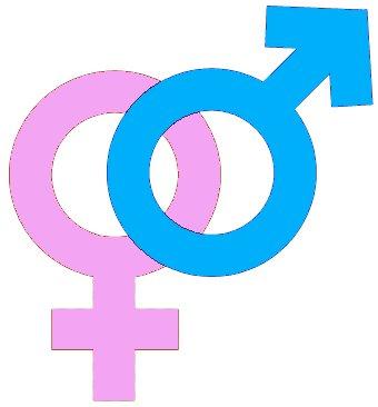 Care este diferența dintre viziunea feminină și cea masculină