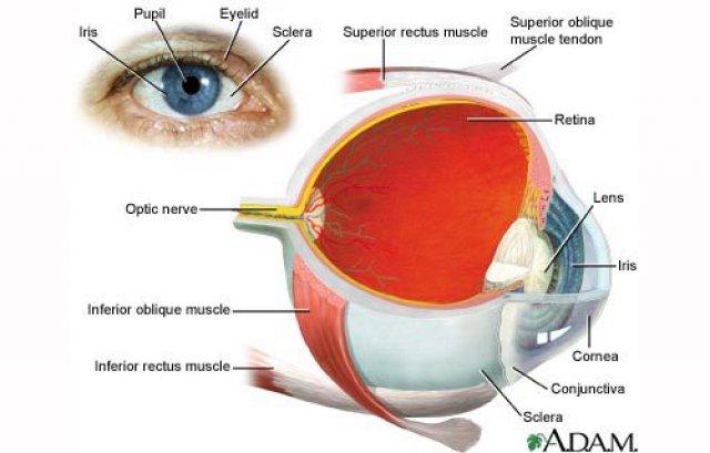 glaucom chirurgie vizuală)