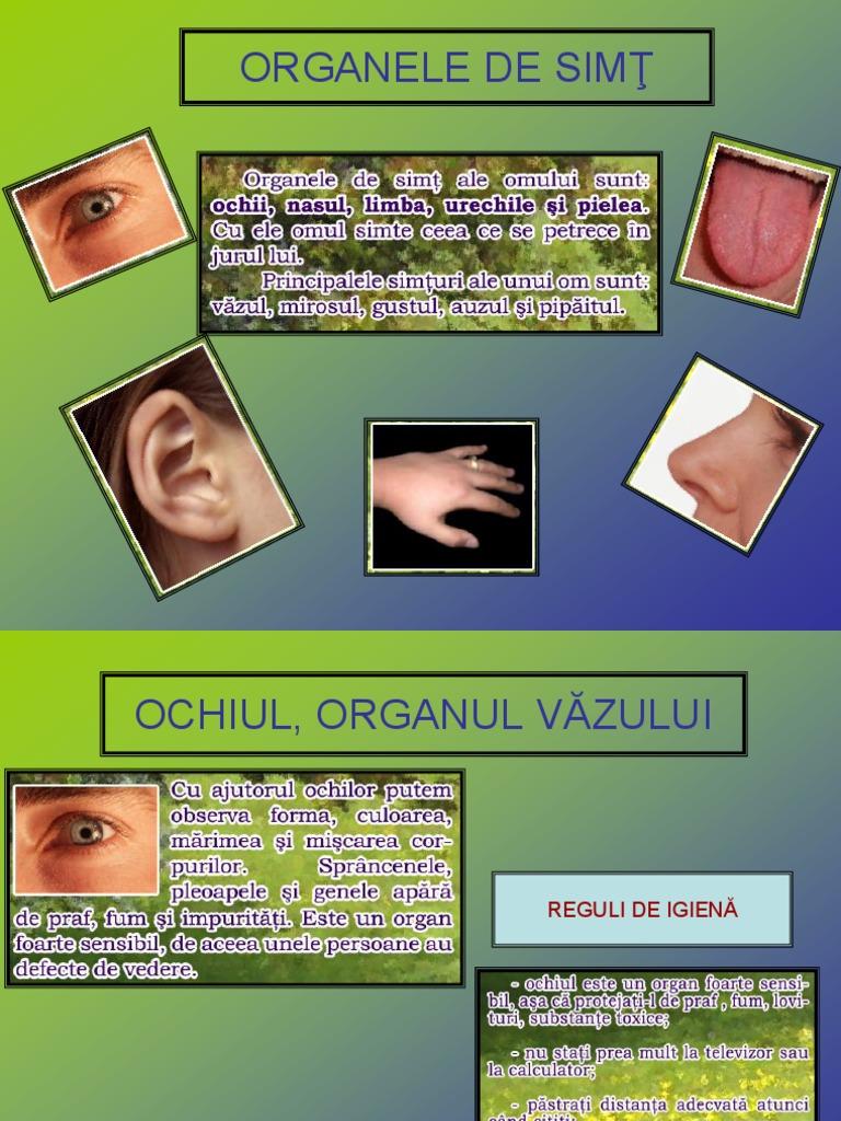 igiena organelor de vedere