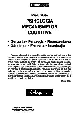 procese cognitive cu insuficiență vizuală)