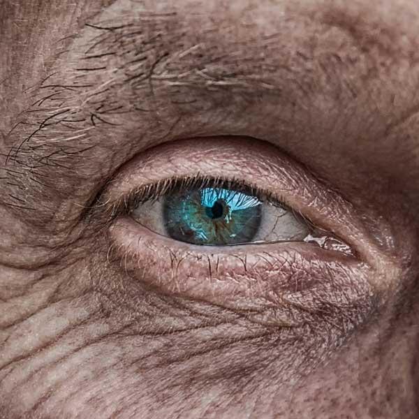 refacerea exercițiilor de vedere pentru ochii liliecilor