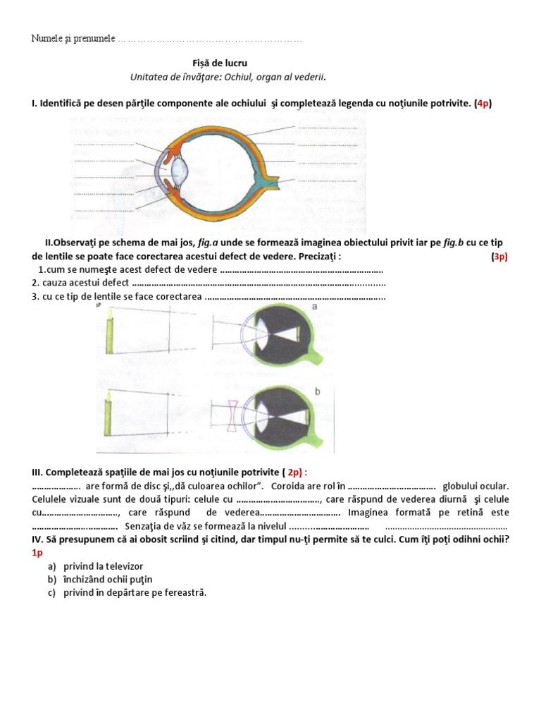 labirinte pentru dezvoltarea vederii viziune 0 6 0 75