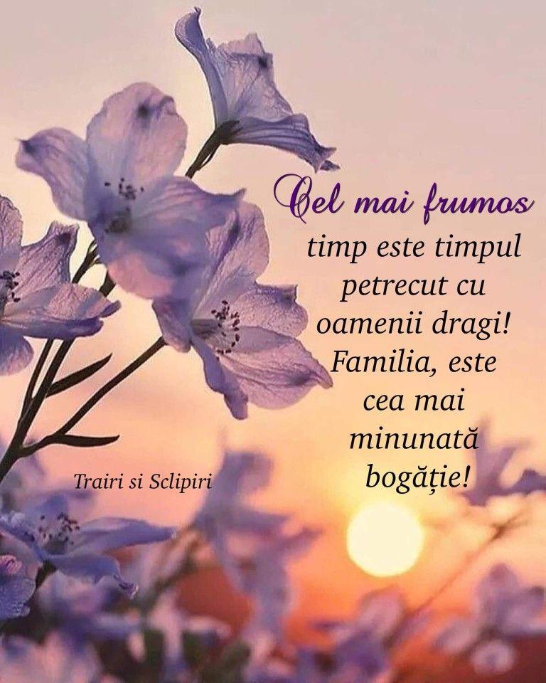 un verset despre vederea bună)