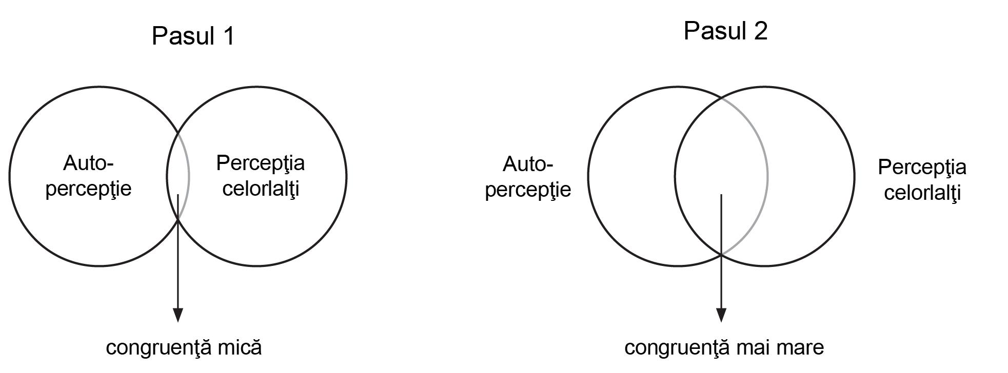 diagrame de identificare a punctelor de vedere)
