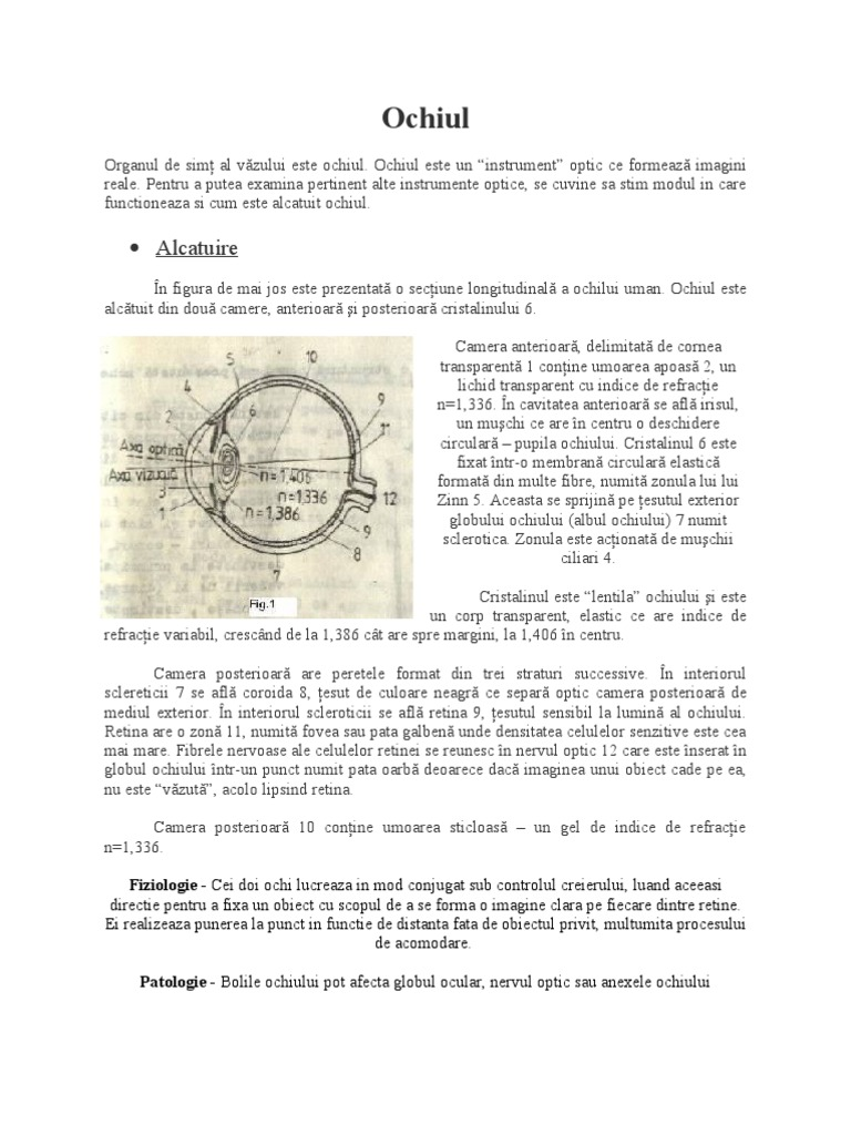 Hipermetropia se vindeca | Cum se poate vindeca hipermetropia natural | Page 6