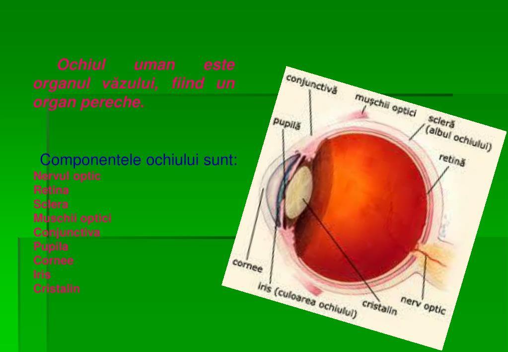Miopia, Hipermetropia, Presbiopia, Astigmatismul