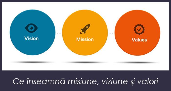 Misiune și viziune