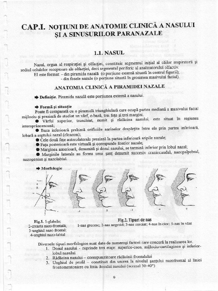 Chist în sinusul - este periculos? Simptomele și tratamentul chisturilor în sinusului maxilar
