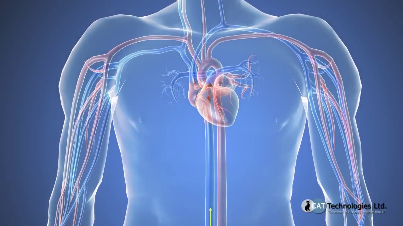 Retinopatie hipertensiva